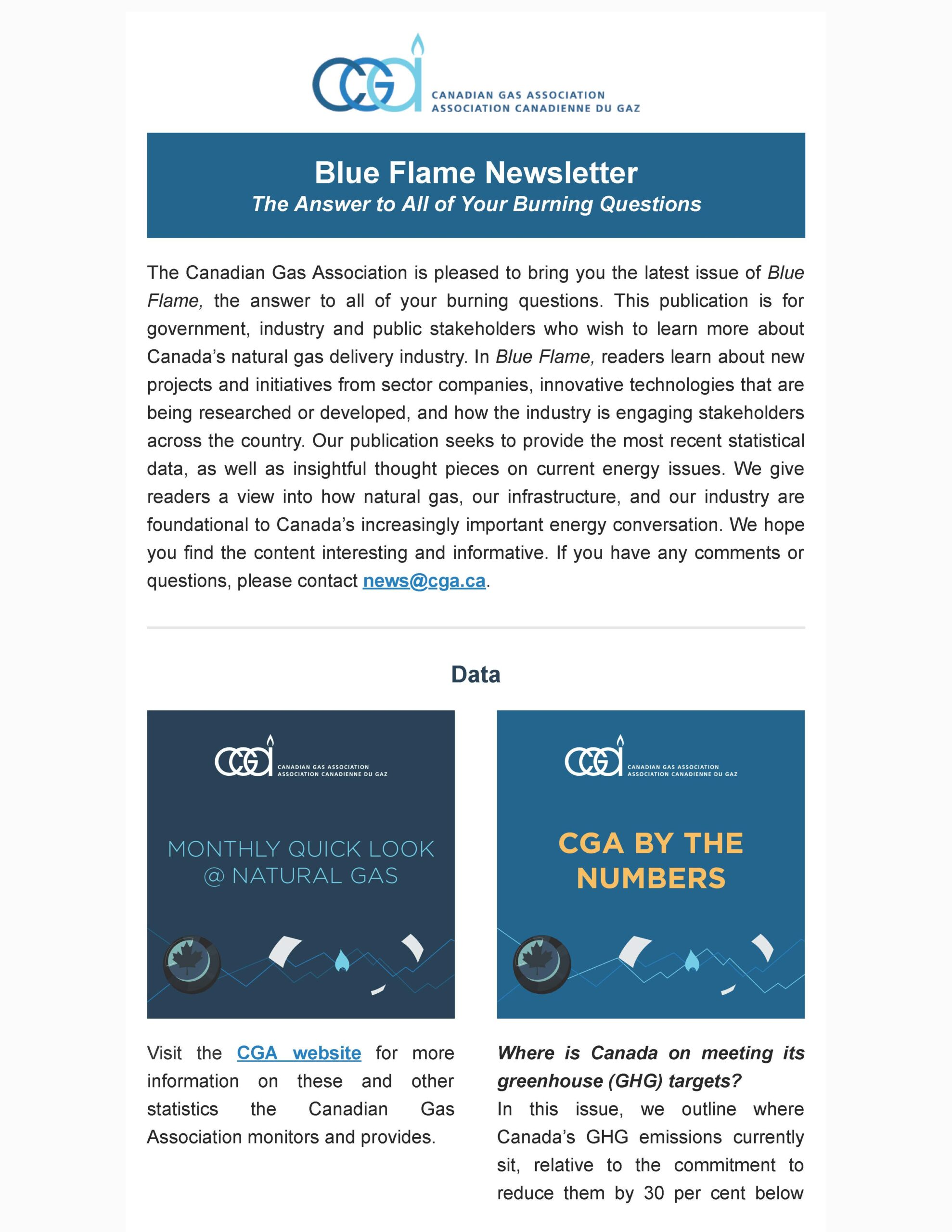 Blue Flame Newsletter issue 6